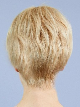 Crystal Wig Human Hair Hand Tied Mono Top by Louis Ferre