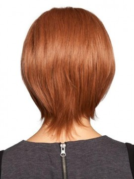 PLF004HM Wig Human Hair Lace Front Hand Tied Mono Top by Louis Ferre